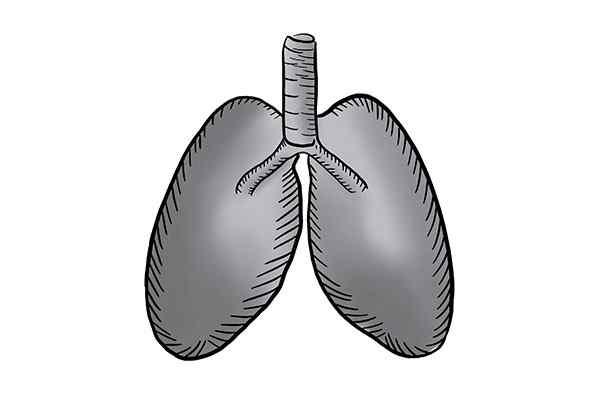 肺结核能治好吗 肺结核的症状