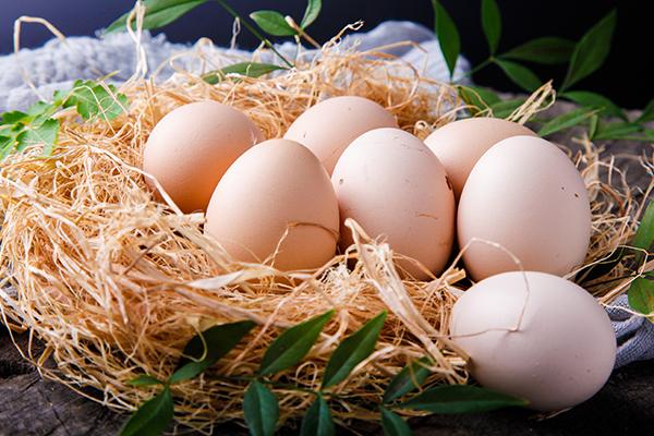一天两个鸡蛋合适吗